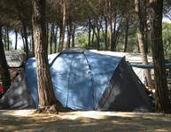 Pitch + Car +Single Tent/Tenda monoposto