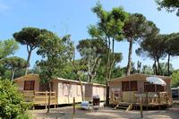 Glamping Camp2Relax Tente lodge avec douche/wc