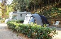 Pitch Roulotte - Camper - Tenda Grande